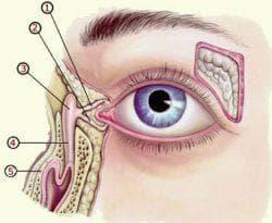 Зондирование глаза младенца