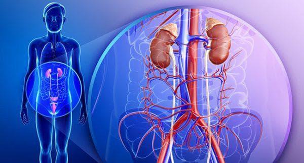 хронических заболеваний мочеполовой системы
