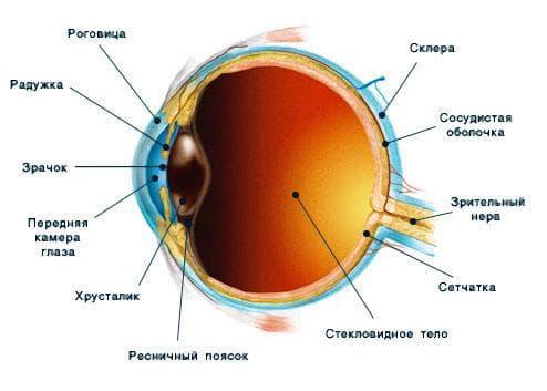повреждения оболочки глаз