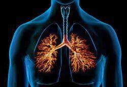 хронические болезни дыхательных путей