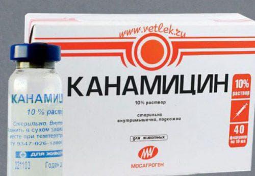мазь Канамицин