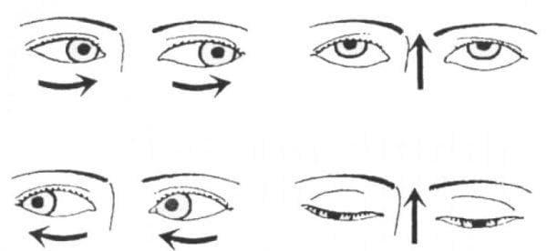зарядка глаз переводить глаза из пола на потолок